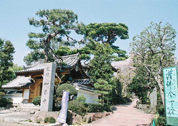 養玉院(如来寺)外観5 アイキャッチ