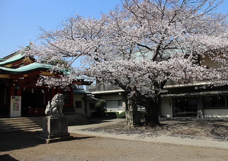 旗岡八幡神社 アイキャッチ