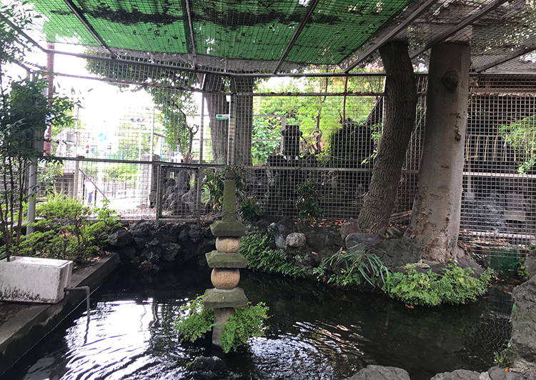 大井の水神