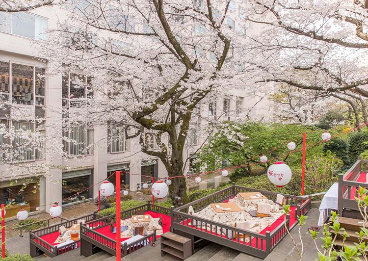 桜と桜桟敷席(グランドプリンスホテル高輪)